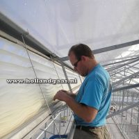 Insect Netting for Every Greenhouse Vent