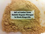 KINGSVILLE STOCK: NON GMO 80% of amino acids organic nitrogen
